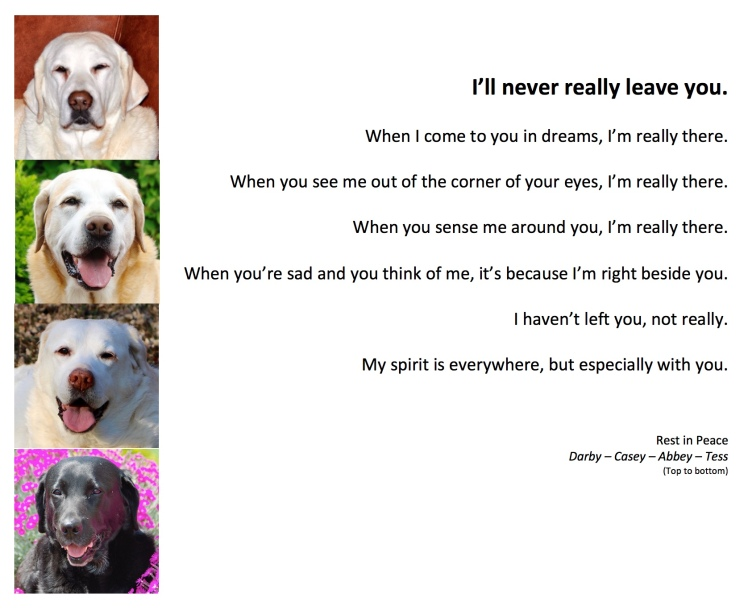 4-dogs-ill-never-really-leave-you